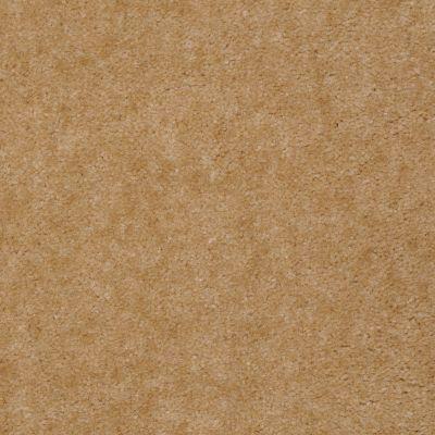 Shaw Floors Venture Emblem Gold 24235_13824
