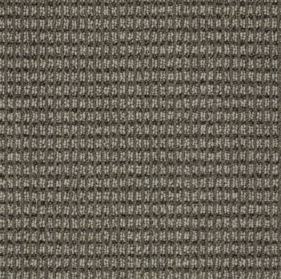 Anderson Tuftex SFA Let's Bark Stylish Gray 00573_13SSF