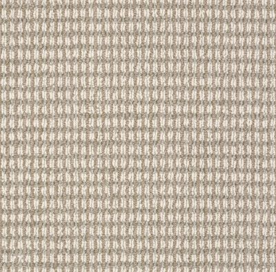 Anderson Tuftex SFA Let's Bark Chic Taupe 00752_13SSF