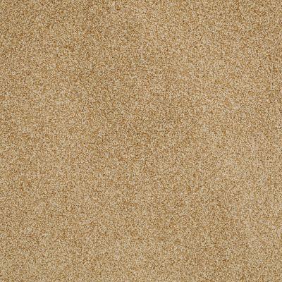 Anderson Tuftex SFA Encore Gold Dust 00225_14SSF