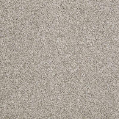 Anderson Tuftex SFA Encore Gray Dust 00522_14SSF