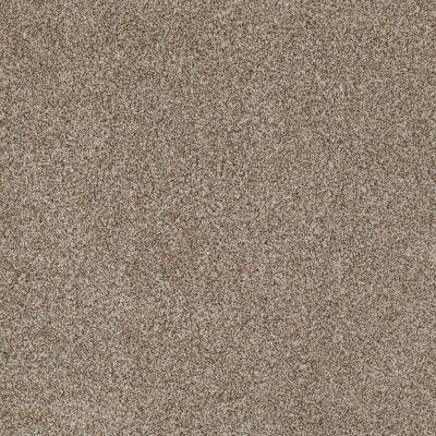 Anderson Tuftex SFA Encore Tumbled Stone 00753_14SSF