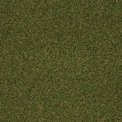 Shaw Grass Spring Choice I Nut Shell 00310_150SG