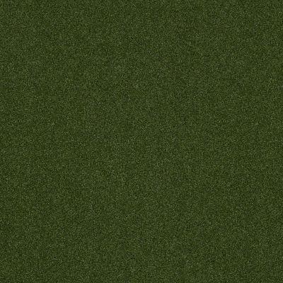 Shaw Grass All Seasons I Uni Green 00300_152SG