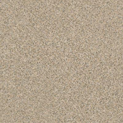 Anderson Tuftex SFA Happy Tails Sand Dune 00223_15SSF