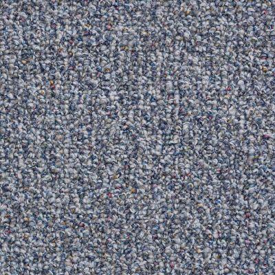 Shaw Floors St. Carlton 15 Traditional Blue 00401_19588