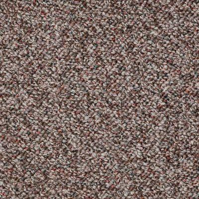 Shaw Floors SFA First Issue Rich Earth 00705_19593