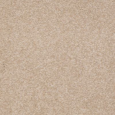 Shaw Floors Couture' Collection Ultimate Expression 12′ Adobe 00108_19698