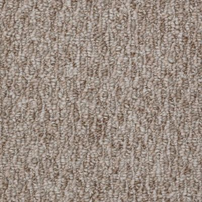 Shaw Floors Durango 12′ Cozy Home 00700_19815