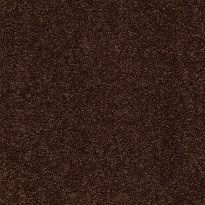 Shaw Floors Couture' Collection Ultimate Expression 15′ Coffee Bean 00711_19829
