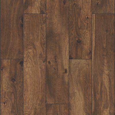 Shaw Floors Ceramic Solutions Harvest 6×36 Rye 00600_199TS