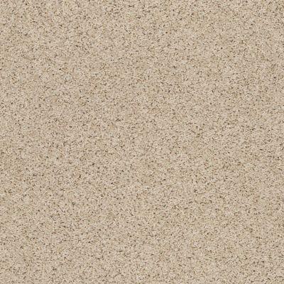 Anderson Tuftex SFA Chastanet II Pale Glow 00222_19SSF