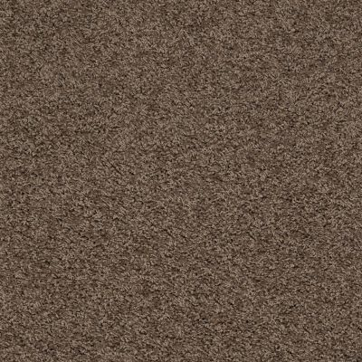 Anderson Tuftex SFA Chastanet II Mocha 00575_19SSF