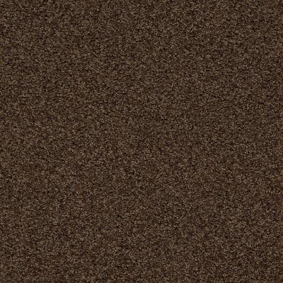 Anderson Tuftex SFA Chastanet II Brownstone 00776_19SSF