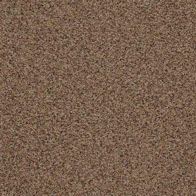 Anderson Tuftex SFA Chastanet II Brown Sugar 0774B_19SSF