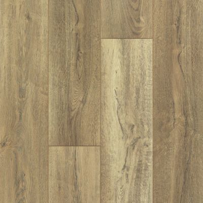 Shaw Floors Vinyl Residential Pantheon HD Plus Foresta 00282_2001V