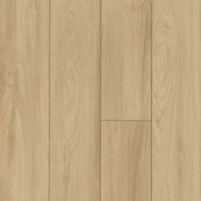 Shaw Floors Vinyl Residential Pantheon HD Plus Como 00299_2001V