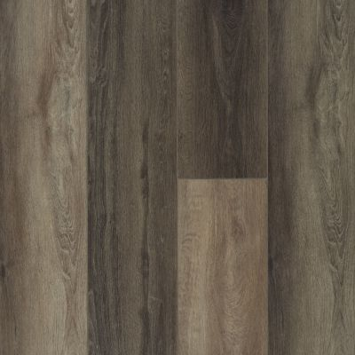 Shaw Floors Resilient Residential Titan HD Plus Plato Oak 07043_2002V