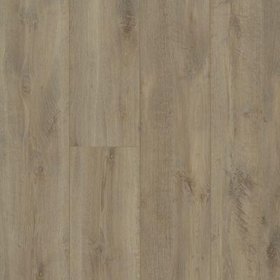 Shaw Floors Resilient Residential Allegiance+ Accent Riverside Oak 01031_2008V