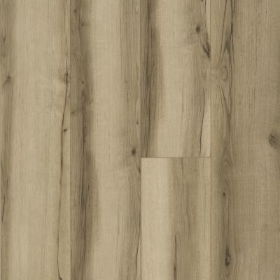 Shaw Floors Resilient Residential Allegiance+ Accent Grand Oak 02001_2008V
