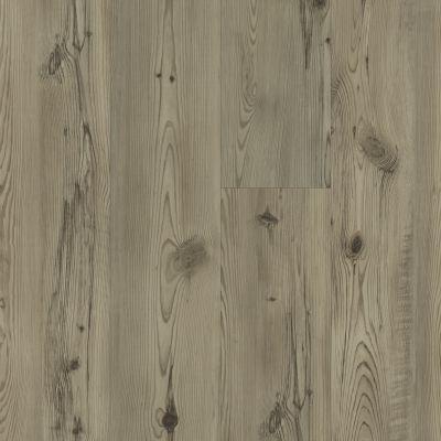 Shaw Floors Resilient Residential Allegiance+ Milled Prestige Pine 01036_2018V
