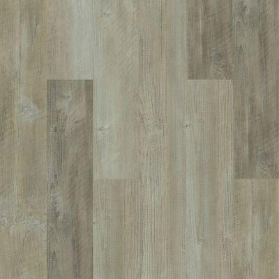 Shaw Floors Vinyl Residential Intrepid HD Plus Salvaged Pine 00554_2024V