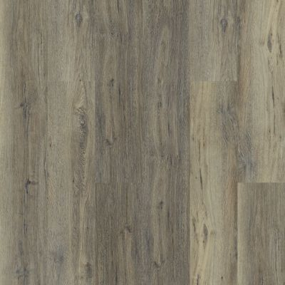 Shaw Floors Resilient Residential Intrepid HD Plus Sandy Oak 05005_2024V