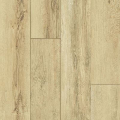 Shaw Floors Resilient Residential Paragon XL HD Plus Classic Oak 00253_2033V