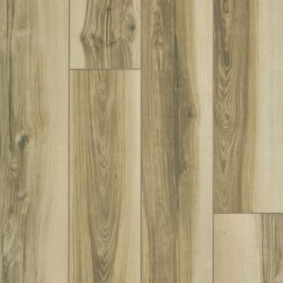 Shaw Floors Resilient Residential Paragon XL HD Plus Light Caramel Butternut 00264_2033V