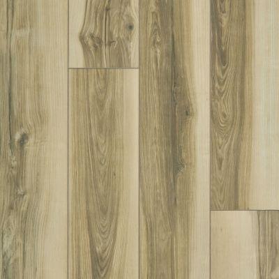 Shaw Floors Resilient Residential Paragon XL HD Plus Light Caramel Butternut 00264_2033V