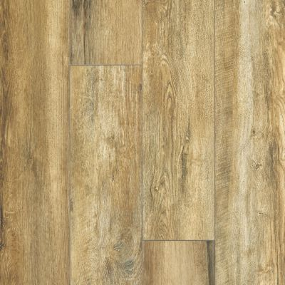 Shaw Floors Resilient Residential Paragon XL HD Plus Vintage Oak 00697_2033V