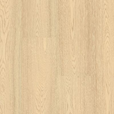 Shaw Floors Resilient Residential Prodigy Hdr Plus Mangata 02031_2038V
