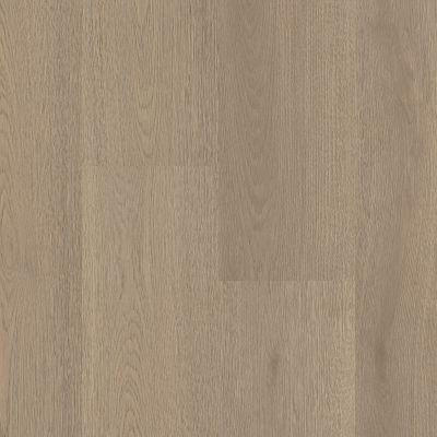 Shaw Floors Resilient Residential Prodigy Hdr Plus Lagom 05103_2038V