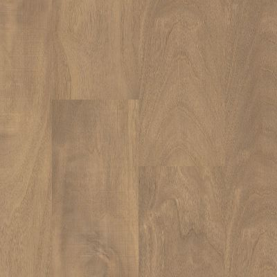 Shaw Floors Resilient Residential Prodigy Hdr Plus Mindful 06007_2038V