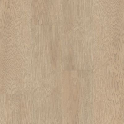 Shaw Floors Resilient Residential Prodigy Hdr Mxl Plus Cotton 01087_2039V