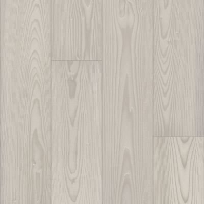 Shaw Floors Resilient Residential Prodigy Hdr Mxl Plus Silk 01088_2039V