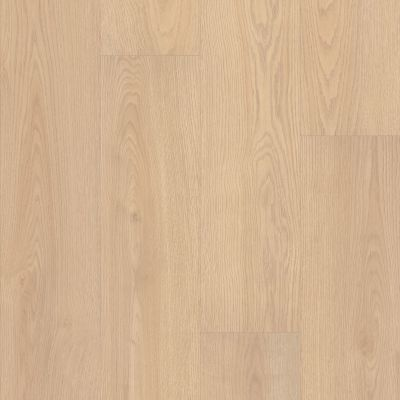 Shaw Floors Resilient Residential Prodigy Hdr Mxl Plus Golden Age 02040_2039V