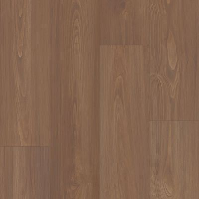 Shaw Floors Resilient Residential Prodigy Hdr Mxl Plus Sable 06010_2039V