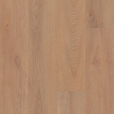 Shaw Floors Resilient Residential Prodigy Hdr Mxl Plus Sienna 06011_2039V