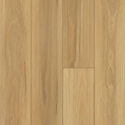 Shaw Floors Resilient Residential Distinction Plus Eucalyptus 00694_2045V
