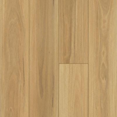 Shaw Floors Resilient Residential Distinction Plus Eucalyptus 00694_2045V