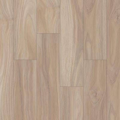 Shaw Floors Resilient Residential Distinction Plus Terraced Acacia 01092_2045V