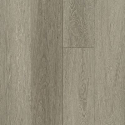 Shaw Floors Resilient Residential Distinction Plus Executive Oak 05079_2045V