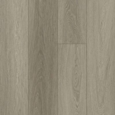 Shaw Floors Resilient Residential Distinction Plus Executive Oak 05079_2045V