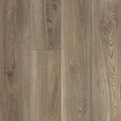 Shaw Floors Resilient Residential Distinction Plus Ash Oak 07065_2045V