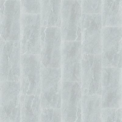 Shaw Floors Ceramic Solutions Arena 12×24 Silver 00150_221TS