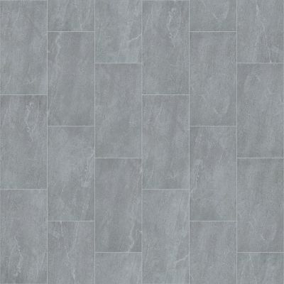 Shaw Floors Ceramic Solutions Arena 12×24 Grey 00500_221TS