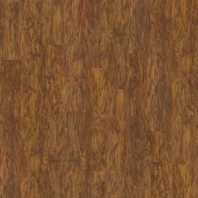 Shaw Floors Resilient Residential Classico Plus Plank Oro 00255_2426V