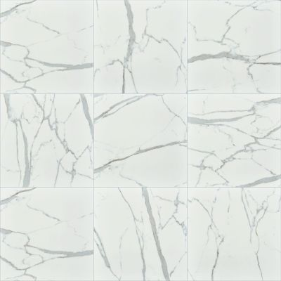 Shaw Floors Ceramic Solutions Universe 20×20 Carrara 00150_250TS