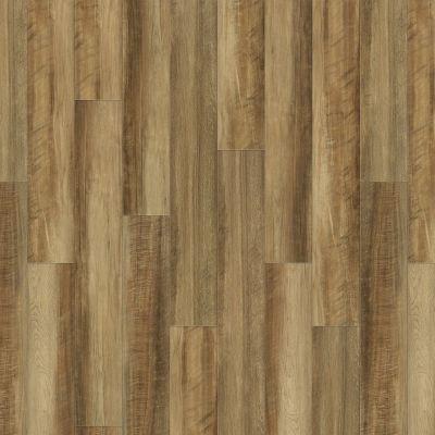 Shaw Floors Vinyl Residential Valore Plus Plank Malta 00203_2545V